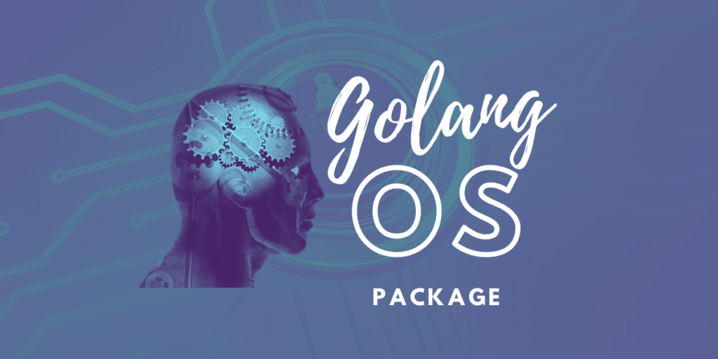 Golang Os Package